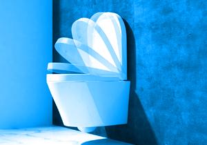 duroplast softclose was bedeutet das toiletten tipp. Black Bedroom Furniture Sets. Home Design Ideas