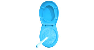 wie toilettenbürste reinigen
