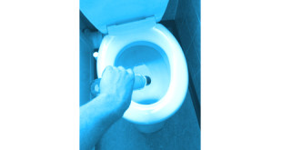 toilette entkalken